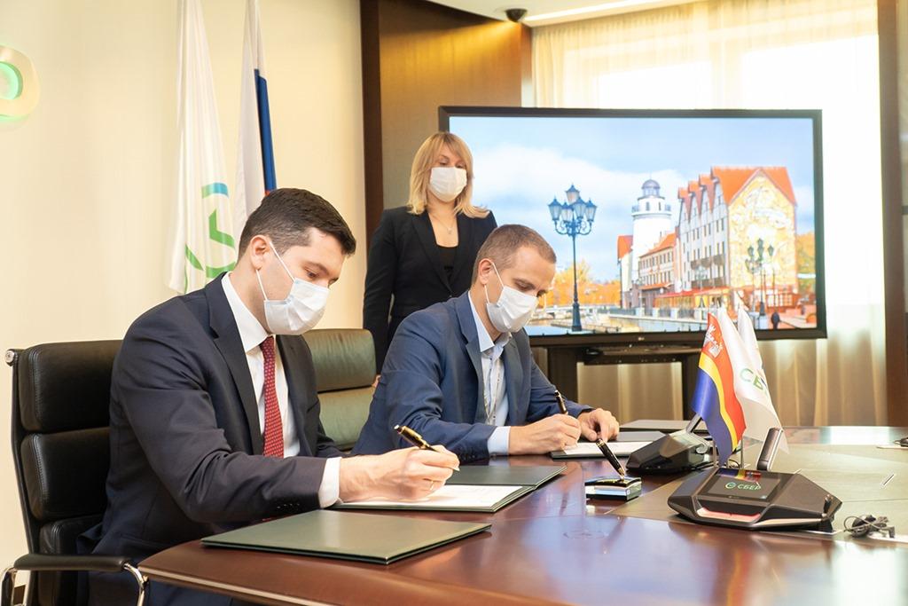 Алиханов нашёл деньги и инвестора под строительство моста через Калининградский залив