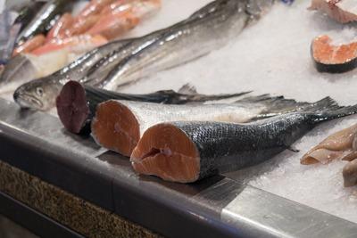 fish-3912997_1280